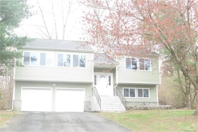 107 Shaker Court N, New Windsor, NY 12553 (MLS #H6107689) :: Cronin & Company Real Estate