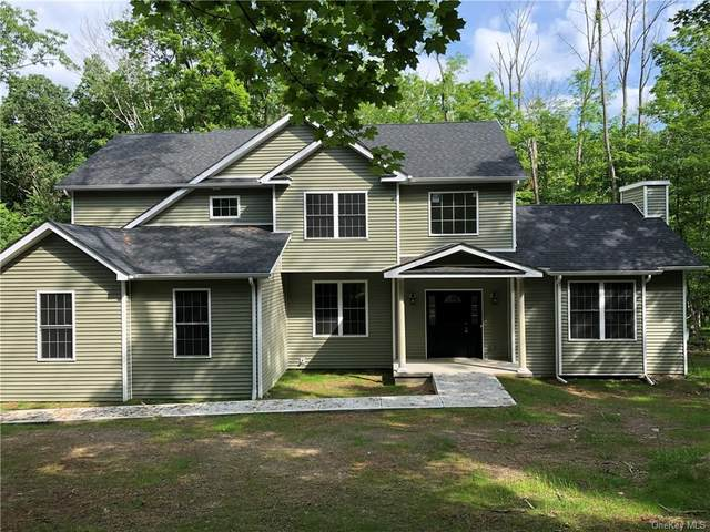 43 Morrow Court, Walden, NY 12586 (MLS #H6107719) :: Kendall Group Real Estate | Keller Williams