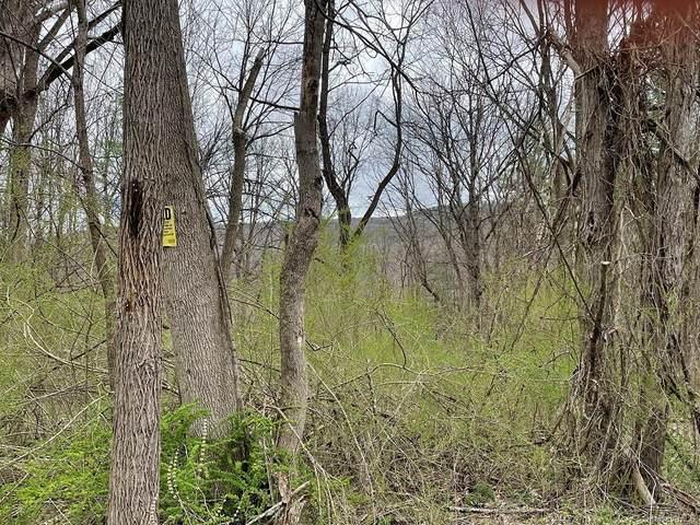 Phillipsport Road, Wurtsboro, NY 12790 (MLS #H6107927) :: Cronin & Company Real Estate