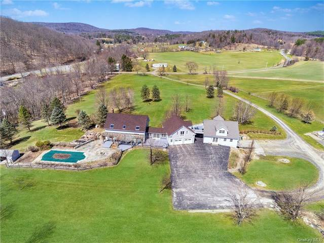 422 County Route 7, Pine Plains, NY 12567 (MLS #H6107946) :: McAteer & Will Estates | Keller Williams Real Estate