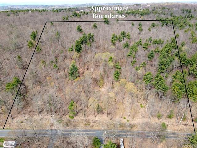 Burden Lake Road, Call Listing Agent, NY 12018 (MLS #H6109486) :: RE/MAX RoNIN