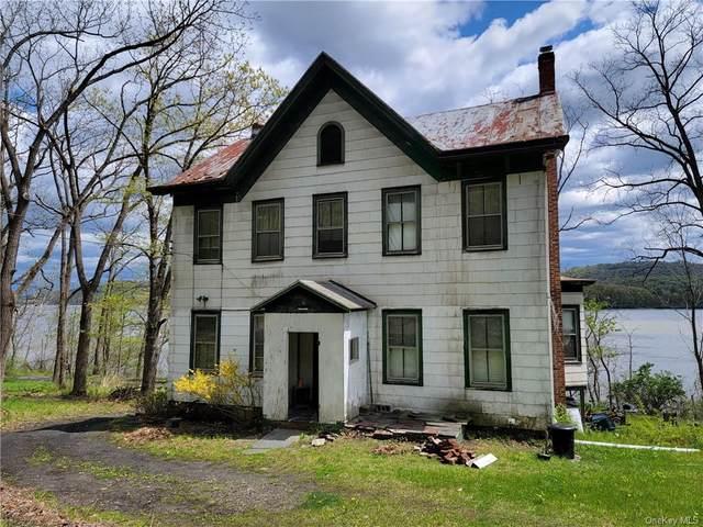 220 Hamburg Road, Catskill, NY 12414 (MLS #H6109916) :: Kendall Group Real Estate | Keller Williams