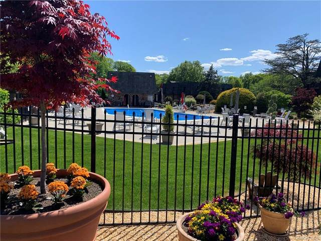9 Briarcliff Drive S #96, Ossining, NY 10562 (MLS #H6110387) :: Frank Schiavone with Douglas Elliman