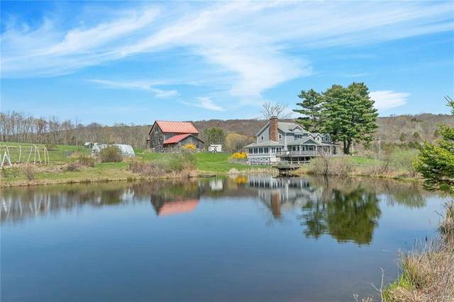 131 William Brown Road, Hankins, NY 12741 (MLS #H6110456) :: Signature Premier Properties