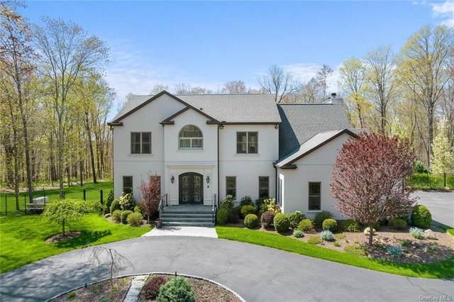 61 Marsh Hill Road, Putnam Valley, NY 10579 (MLS #H6110565) :: Signature Premier Properties