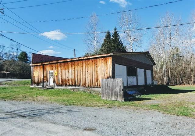 126 Country Road 121, Hortonville, NY 12745 (MLS #H6110774) :: Signature Premier Properties