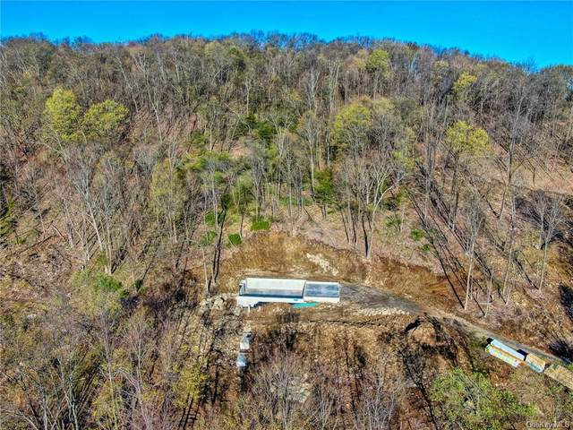 2 Gailie Drive, Chester, NY 10918 (MLS #H6110799) :: Signature Premier Properties