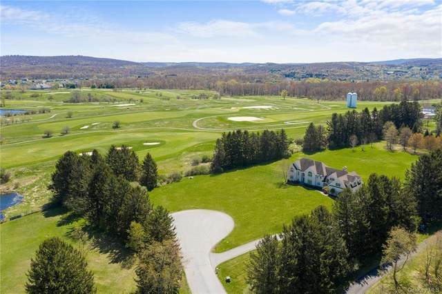 18 Trinity Way, Lagrangeville, NY 12540 (MLS #H6112739) :: Signature Premier Properties
