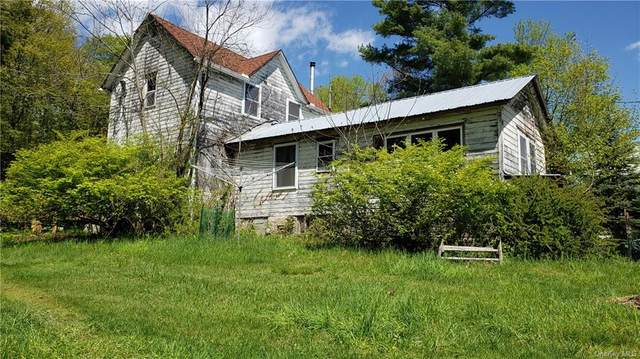 45 Mattison Road, White Lake, NY 12786 (MLS #H6112756) :: Mark Boyland Real Estate Team