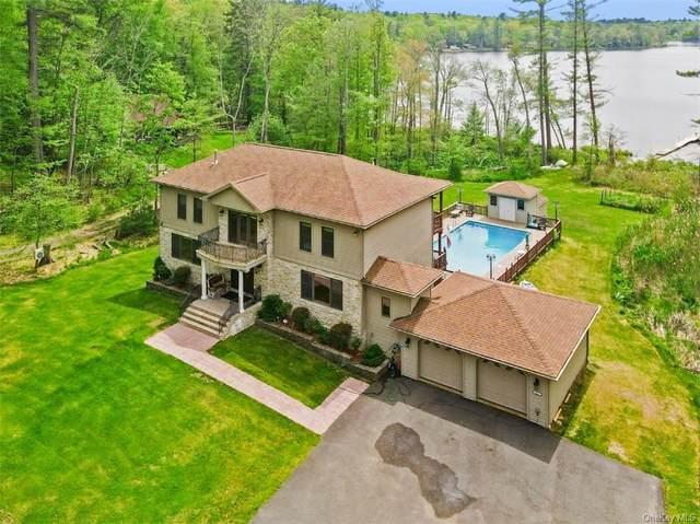 113 Airport Road, Eldred, NY 12732 (MLS #H6114005) :: Cronin & Company Real Estate
