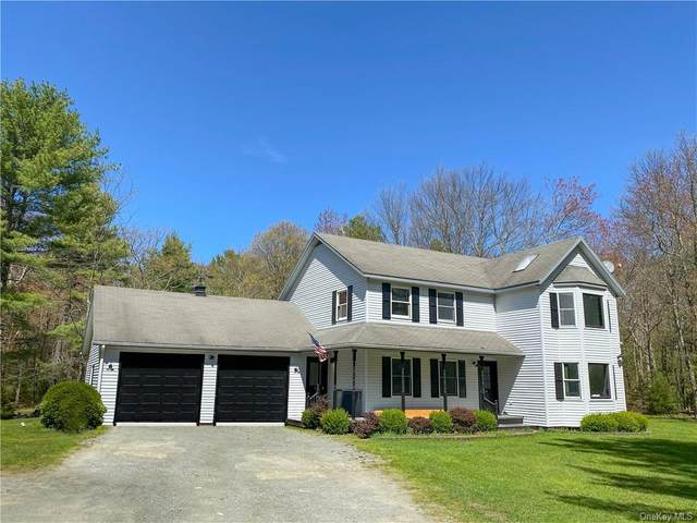 325 Hartwood Road, Forestburgh, NY 12777 (MLS #H6114033) :: RE/MAX RoNIN