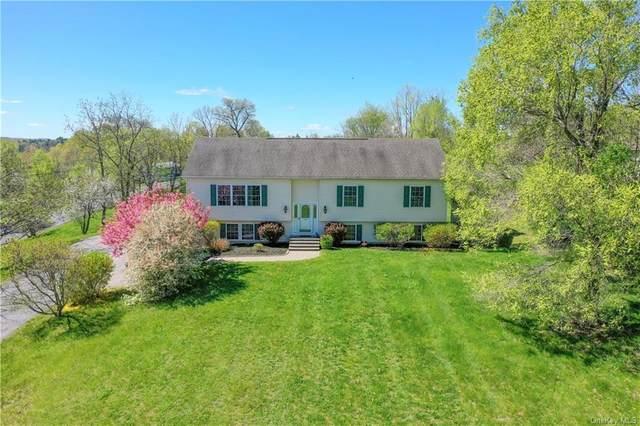 1 Brendella Court, Wallkill, NY 12589 (MLS #H6114142) :: Carollo Real Estate