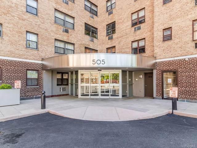 505 Central Avenue #518, White Plains, NY 10606 (MLS #H6114580) :: Shalini Schetty Team