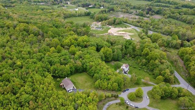4 Crossing Court, Campbell Hall, NY 10916 (MLS #H6117026) :: RE/MAX RoNIN