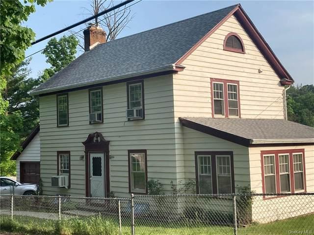 34 Cape Avenue, Ellenville, NY 12428 (MLS #H6117064) :: Cronin & Company Real Estate