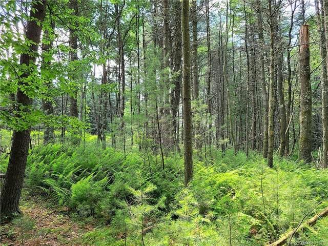 Deer Meadow Road, Bethel, NY 12720 (MLS #H6117227) :: McAteer & Will Estates | Keller Williams Real Estate