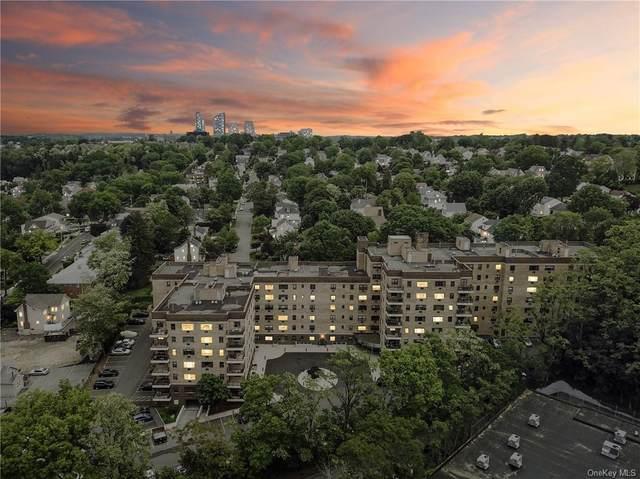 505 Central Avenue #201, White Plains, NY 10606 (MLS #H6119755) :: Howard Hanna | Rand Realty