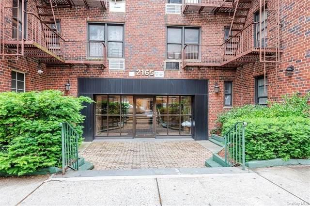 2165 Matthews Avenue 5J, Bronx, NY 10462 (MLS #H6120616) :: Howard Hanna Rand Realty