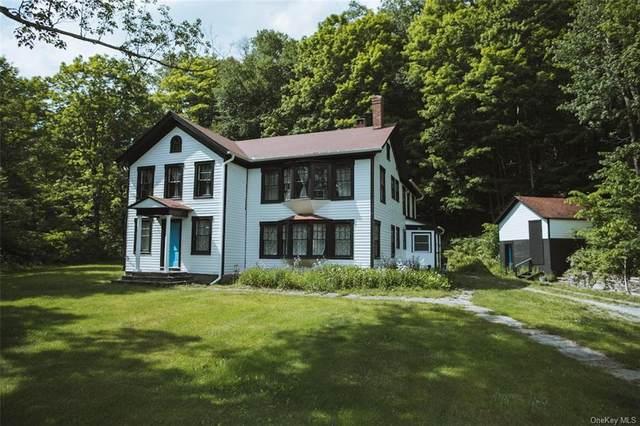 1120 Old Route 17, Livingston Manor, NY 12758 (MLS #H6121157) :: Barbara Carter Team