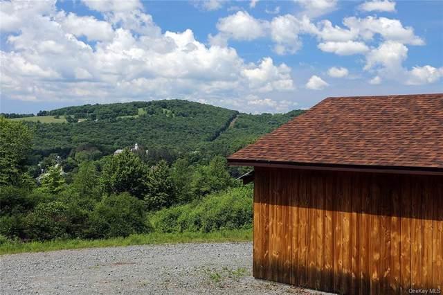 12 Kathleen Lane, Jeffersonville, NY 12748 (MLS #H6121375) :: Cronin & Company Real Estate
