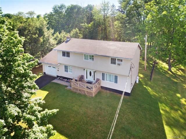 24 Donna Lane E, Wallkill, NY 12589 (MLS #H6121392) :: Carollo Real Estate