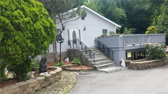 223 Austin Road, Mahopac, NY 10541 (MLS #H6122162) :: Carollo Real Estate