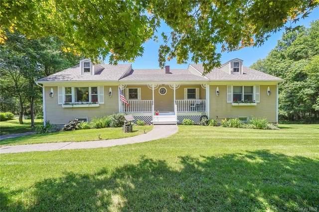 30 Hilo Drive, Campbell Hall, NY 10916 (MLS #H6122169) :: Carollo Real Estate