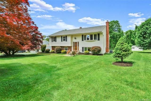 101 Panorama Drive, Patterson, NY 12563 (MLS #H6122239) :: Nicole Burke, MBA | Charles Rutenberg Realty
