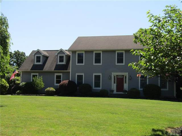 10 Skyview Court, Campbell Hall, NY 10916 (MLS #H6122772) :: RE/MAX RoNIN