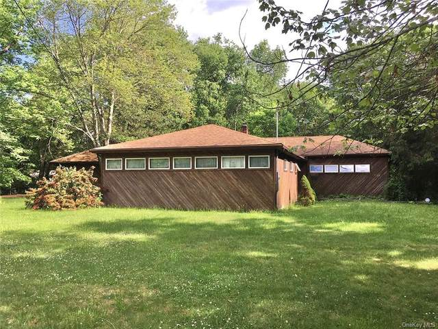 37 Little Pond Road, Hurleyville, NY 12747 (MLS #H6122798) :: RE/MAX RoNIN