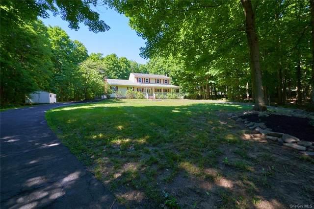 93 Roselawn Road, Highland Mills, NY 10930 (MLS #H6123130) :: Barbara Carter Team