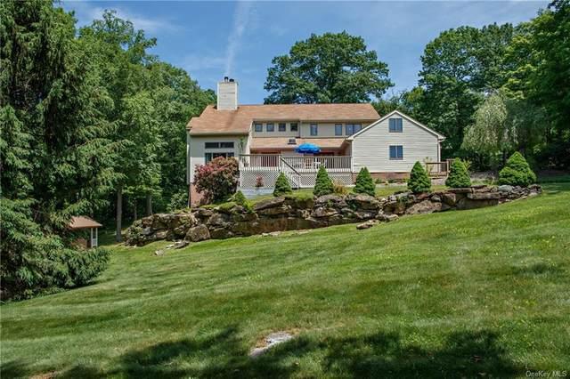 29 Cunningham Lane, Pawling, NY 12564 (MLS #H6123494) :: Carollo Real Estate