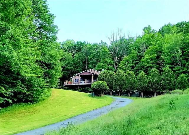 9 Stangle Drive, Grahamsville, NY 12740 (MLS #H6123502) :: Carollo Real Estate