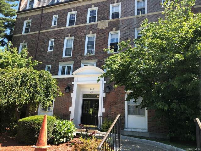 208 Centre Avenue 5D, New Rochelle, NY 10805 (MLS #H6124203) :: Carollo Real Estate