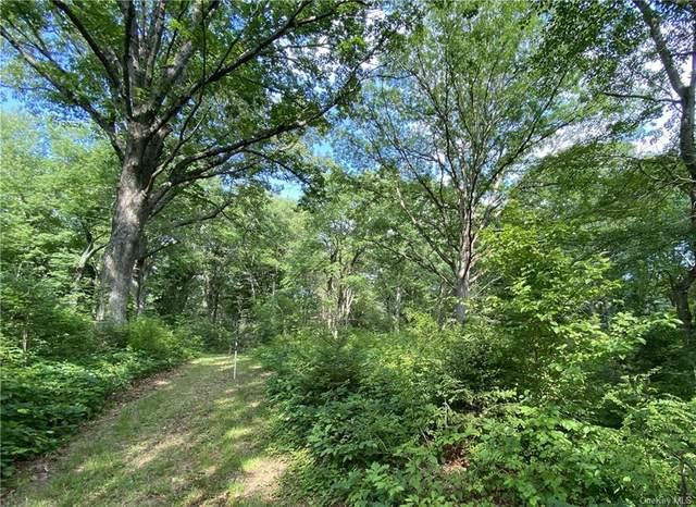 00 Dann Farm Road, Pound Ridge, NY 10576 (MLS #H6124746) :: Mark Boyland Real Estate Team