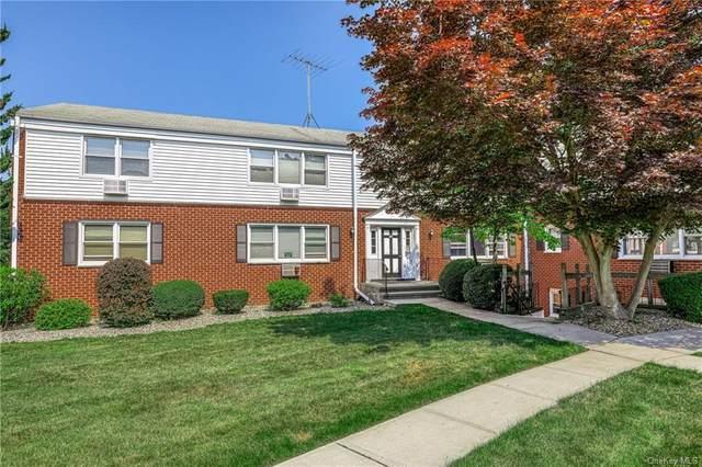 33 Bon Aire Circle #8202, Suffern, NY 10901 (MLS #H6124867) :: Cronin & Company Real Estate