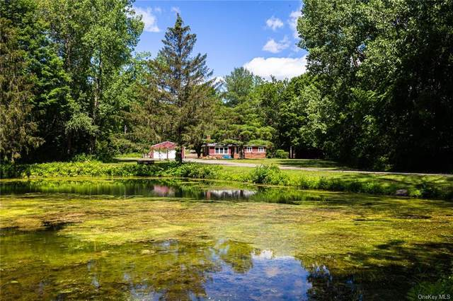 641 State Route 82, Call Listing Agent, NY 12523 (MLS #H6124990) :: Team Pagano