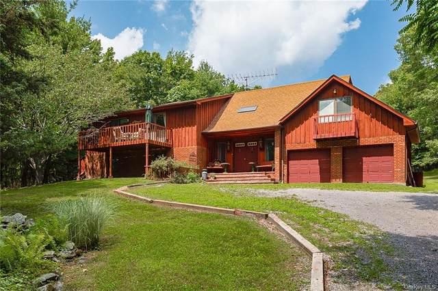 1162 Duell Road, Stanfordville, NY 12581 (MLS #H6125261) :: Carollo Real Estate