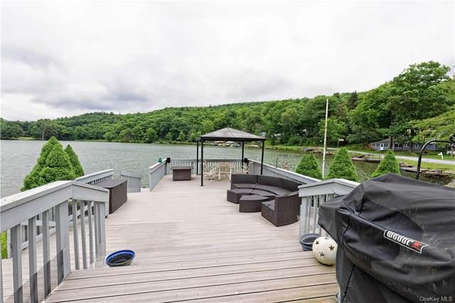 14 Silver Lake, Call Listing Agent, NY 13783 (MLS #H6125613) :: Shalini Schetty Team