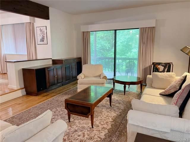 380 Birch Lane, Irvington, NY 10533 (MLS #H6126399) :: Goldstar Premier Properties