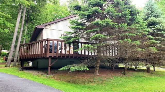 1 Guilford Lane, Monticello, NY 12701 (MLS #H6126709) :: Carollo Real Estate