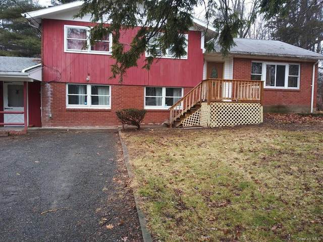 13 Arnold Drive, Woodstock, NY 12498 (MLS #H6127062) :: Corcoran Baer & McIntosh