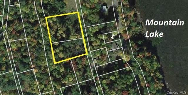 00 Starlight Drive, Smallwood, NY 12778 (MLS #H6127137) :: Goldstar Premier Properties