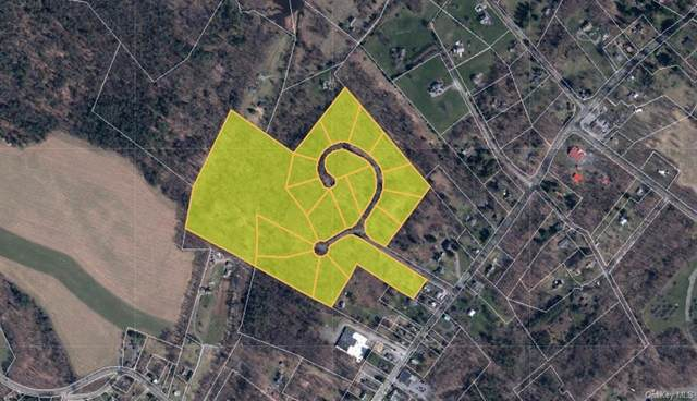 18 Homes Subdivision Road, Stone Ridge, NY 12484 (MLS #H6127673) :: Goldstar Premier Properties