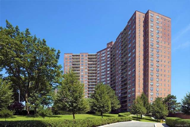 5900 Arlington Avenue 11O, Bronx, NY 10471 (MLS #H6128128) :: Laurie Savino Realtor