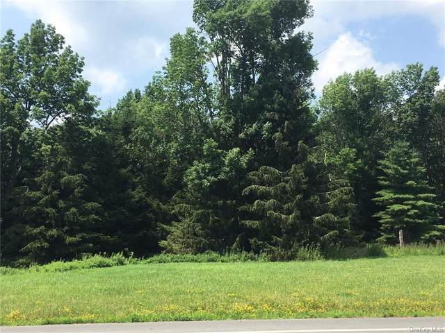 Route 42 Route, Forestburgh, NY 12777 (MLS #H6128569) :: Carollo Real Estate