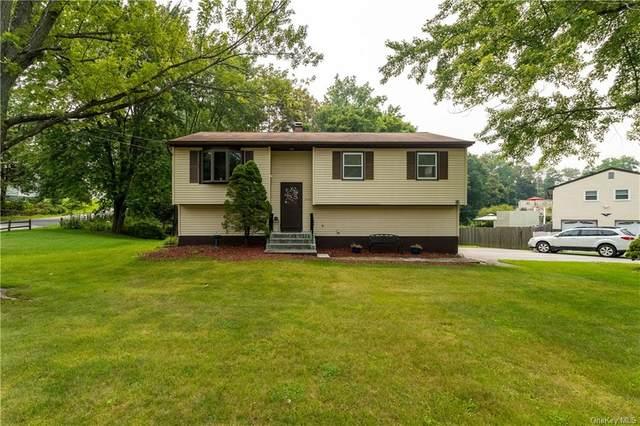 53 Cardinal Drive, Poughkeepsie, NY 12601 (MLS #H6129121) :: Carollo Real Estate