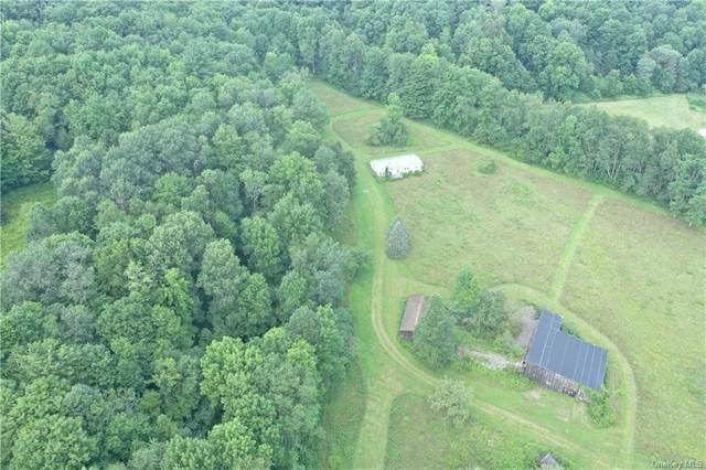 0 Shinhopple Bk Road, Downsville, NY 13755 (MLS #H6129465) :: Cronin & Company Real Estate