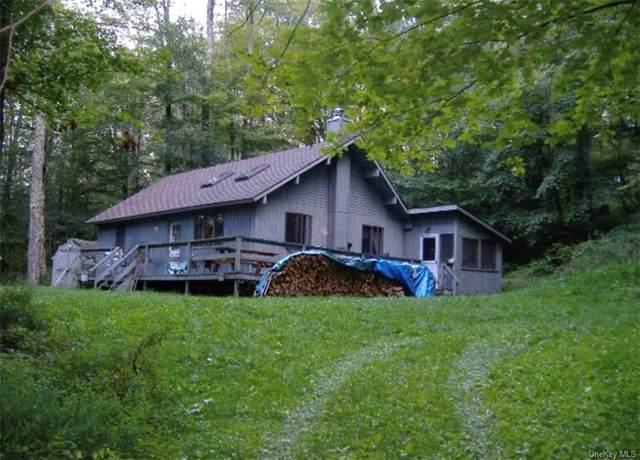 699 Post Road, Andes, NY 13731 (MLS #H6129685) :: Carollo Real Estate
