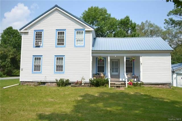 5260 County Highway 23, Walton, NY 13856 (MLS #H6129915) :: Kendall Group Real Estate | Keller Williams